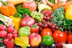 Food Programs for Child Care Programs,day care food programs